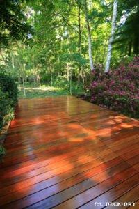 Zdjęcie ładnego Tarasu z drewna ogród