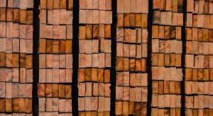 Drzewo Tekowe na deski tarasowe zdjęcie