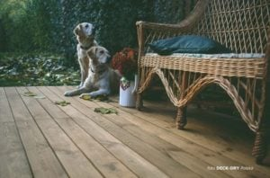 Meble Drewniane Ogrodowe Podłoga Drewniana