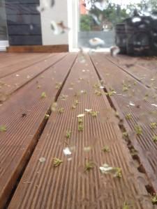 Deska Tarasowa Ryflowana Deck-Dry Zdjęcie